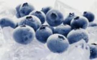 Как заморозить чернику нужно ли мыть заморозка в пакетах с сахаром