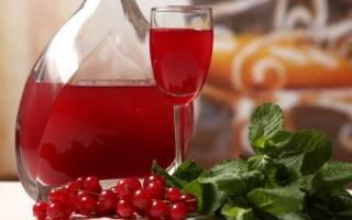 Вино из калины в домашних условиях простой рецепт