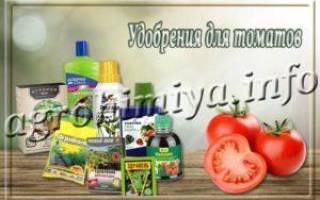 Органическая подкормка томатов