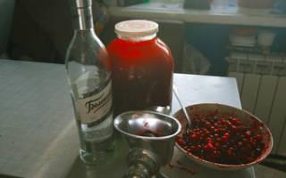Клюква на спирту рецепт приготовления в домашних условиях