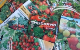 Помидоры на балконе выращивание пошагово + фото