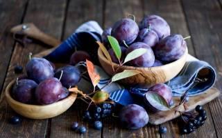 Домашнее вино из сливы пошаговый рецепт