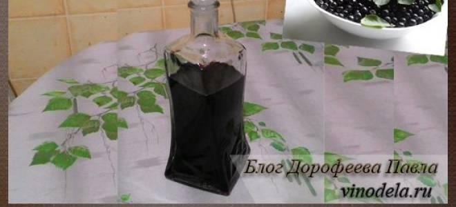 Наливка из черноплодной рябины в домашних условиях на водке на спирту на самогоне