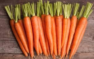 Посадка моркови под зиму сроки сорта подготовка грядок