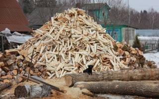 Когда заготавливают дрова