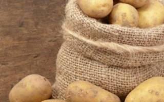 Лучшие сорта картофеля для средней полосы россии+ фото отзывы