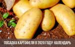 Посадка картофеля по лунному календарю 2020 год