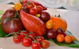 Лучшие сорта томатов на 2020 год описание фото отзывы