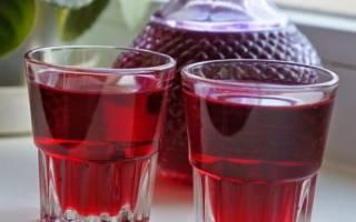 Настойка на клюкве простой и быстрый рецепт на сушеной клюкве на спирту на водке в домашних условиях