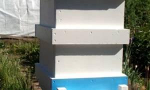 Ульи из пенополистирола (ппс) отзывы пчеловодов чертежи
