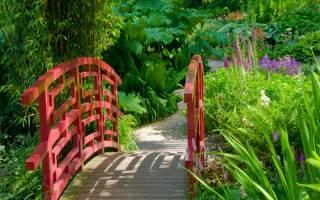 Садовые мостики в ландшафтном дизайне + фото