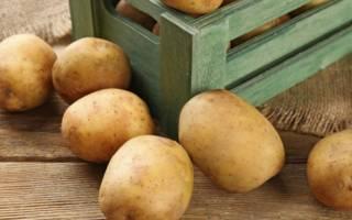 Мыть ли картофель перед хранением