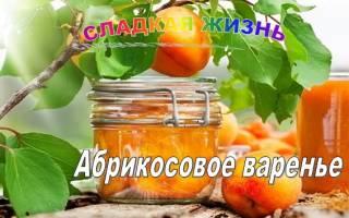 Варенье из абрикосов на зиму без косточек с косточками «пятиминутка» «янтарное» «королевское»