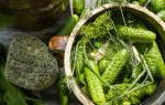 Малосольные огурцы рецепт быстрого приготовления в кастрюле