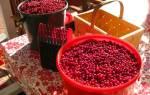 Брусника в сиропе на зиму рецепты без варки