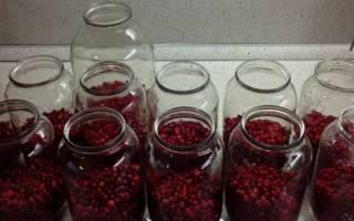 Компот из брусники простые рецепты на зиму без стерилизации с яблоками с клюквой