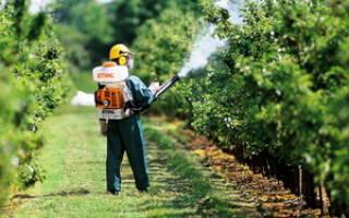 Вредители и болезни плодовых деревьев и кустарников