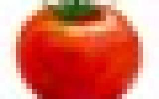 Смузи с сельдереем рецепты коктейля с яблоком огурцом киви имбирем