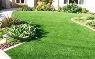 Искусственный газон виды покрытия состав способы укладки + фото