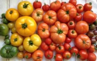 Как сохранить зеленые помидоры до покраснения