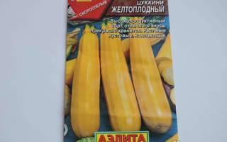 Кабачок желтоплодный описание фото отзывы