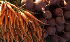 Как хранить свеклу и морковь на зиму