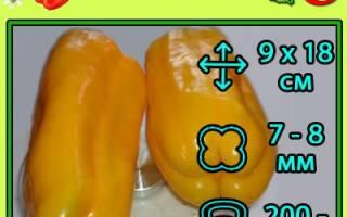 Перец джемини f1 отзывы + фото