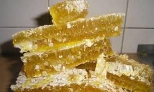 Пчелиный воск едят или нет как есть соты можно ли глотать