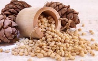 Как хранить кедровые орехи в домашних условиях очищенные в шишках