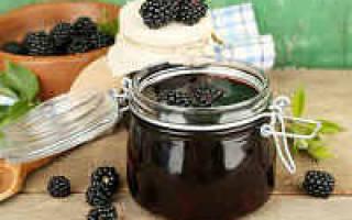 Варенье из ежевики на зиму 21 рецепт – «пятиминутка» с целыми ягодами густое