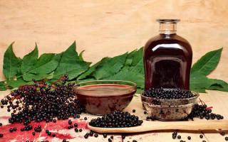 Сок из черноплодной рябины на зиму в домашних условиях полезные свойства и противопоказания рецепты в соковарке через соковыжималку через мясорубку